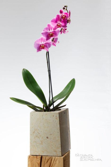 Orchideen Übertopf Ambar gelb Kalkstein
