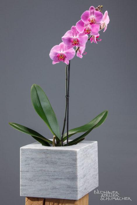 Orchideen Übertopf Cristallina Marmor