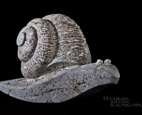 Schnecke aus Bürgenstock Kalkstein