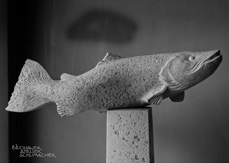 Forelle aus Comblanchien Kalkstein