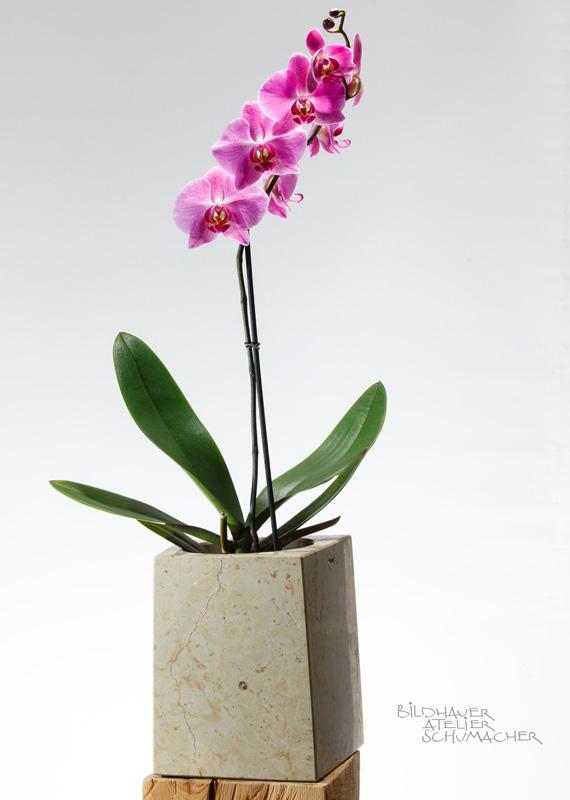 Orchideen Übertopf Ambar gelb