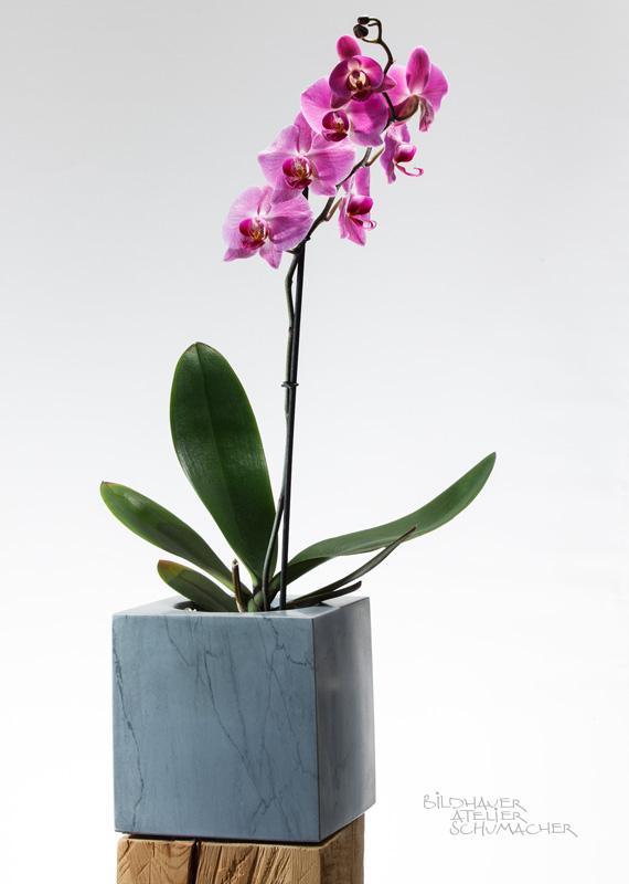 Orchideen Übertopf Bardiglio Marmor