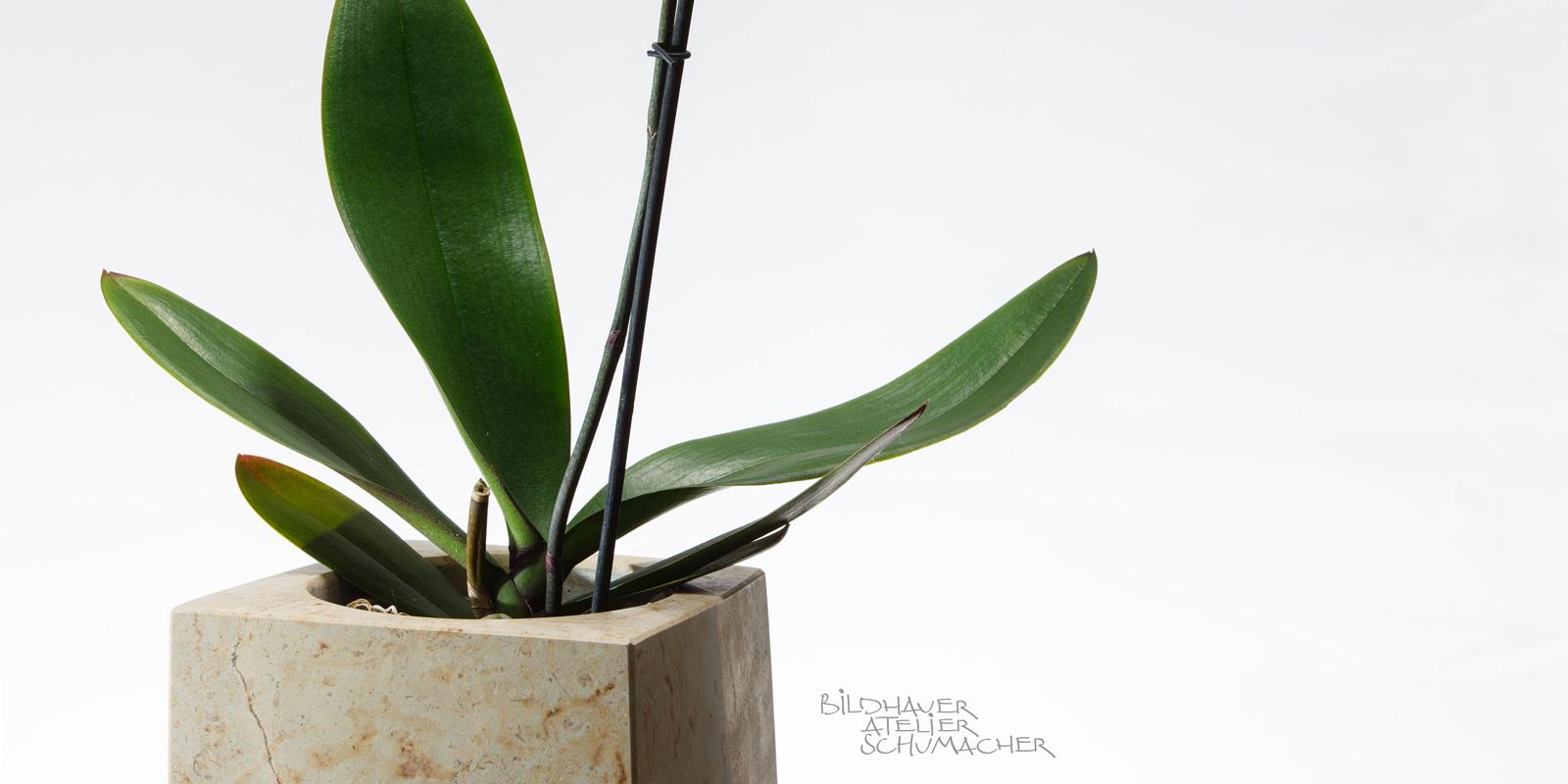Orchideen Übertopf